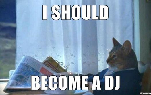 I Should Become a DJ