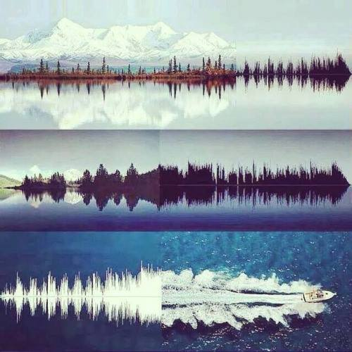 Sound Waves and Nature