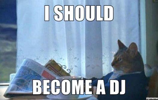 I Should Become a DJ
