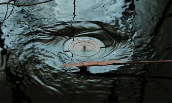 Water Vinyl Loop